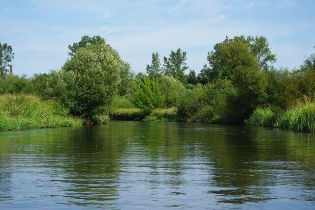 Inauguracyjny spływ kajakowy rzeką Wieprzą zorganizowany przez firmę KajakKAJAK
